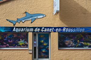 аквариум Канэ