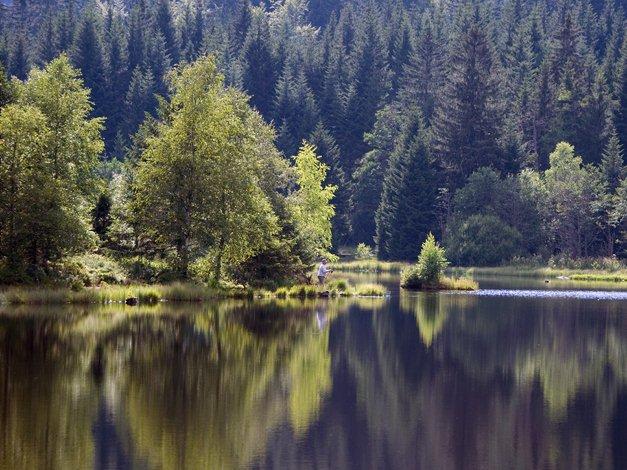 озеро лиспаш 1