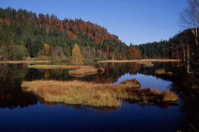 озеро лиспаш 2